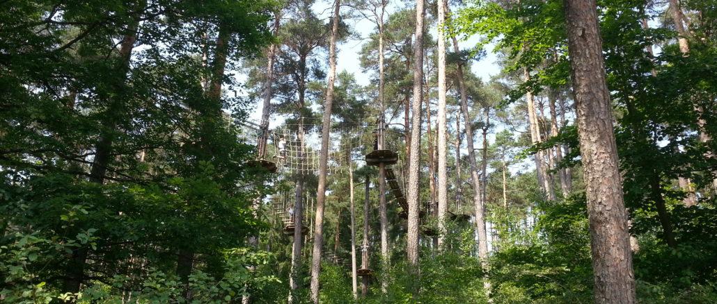 Kletterpark Enderndorf5