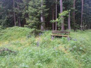 Moenchswald