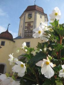 Spielzeugmuseum Turm2