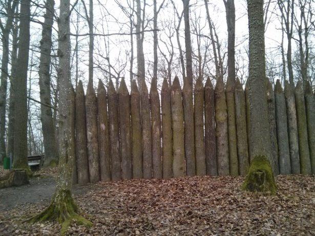 Walderlebnispfad Gunzenhausen