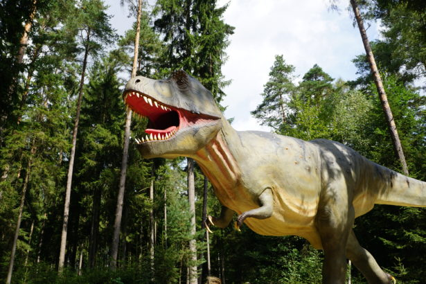 dino park denkendorf _ (16)