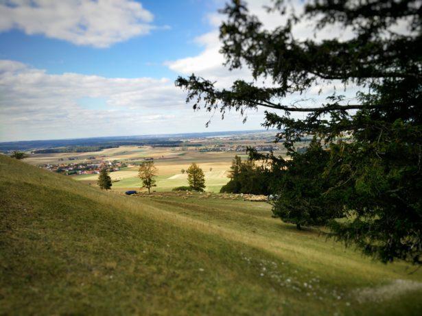 Wanderung am Gelben Berg
